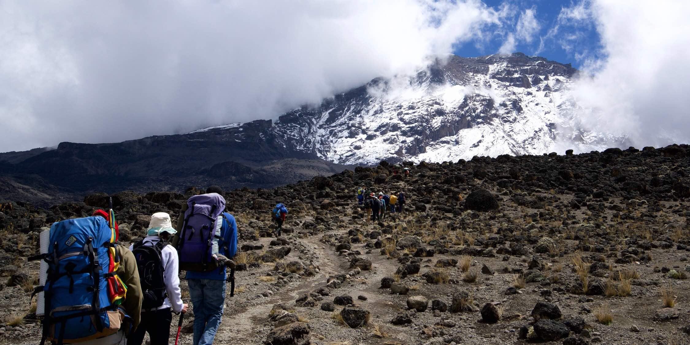 Kilimanjaro キリマンジャロ 吉力馬札羅山